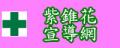 紫錐花宣導網